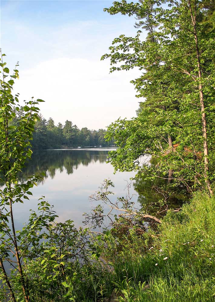 Lincoln Pond